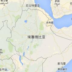 【埃塞俄比亚】双清