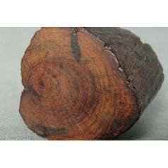 木材的识别方法之二篇