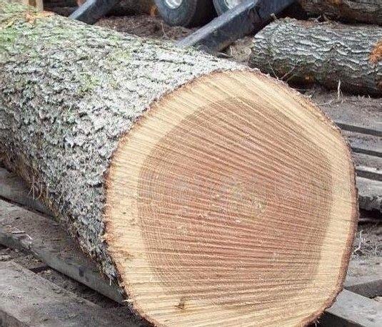 雕刻木材品种图片大全